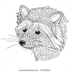 Small Picture Hand Drawn Coloring Pages Raccoon Head Stock Vector 377574043