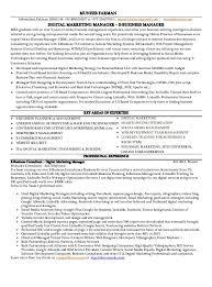 sample r atilde copy sum atilde copy global e commerce e business executive 02 discussing the ecommerce manager resume