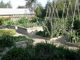 Kitchen Garden Foundation Schools Permaculture In Public Gardens