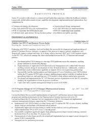 Businessment Resume Executive Samples Prime Resumes Doc Keywords