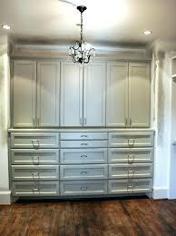 built in hallway cabinets hallway cabinet doors bedroom built in storage cabinets with doors best hallway