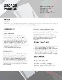 The Professional Resume Layout 2017