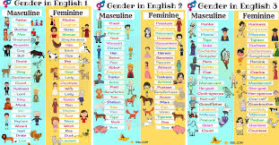 All Genders Chart Gender Of Nouns Useful Masculine And Feminine List 7 E S L
