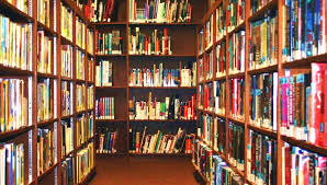 an essay article on my school library