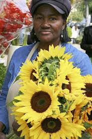 Blue <b>Iris Flowers</b> – Eastern Market DC