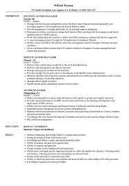 Sample Access Management Resume Access Manager Resume Samples Velvet Jobs 16