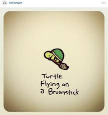 Small Picture 314 best turtle images on Pinterest Cute turtles Easy doodles