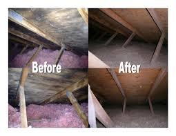 attic mold remediation cost. Interesting Remediation Throughout Attic Mold Remediation Cost D