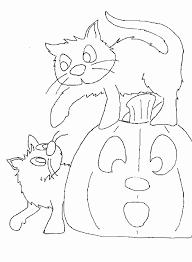 Disegni Bimba Da Colorare Due Gattini Ed Una Zucca Di Halloween
