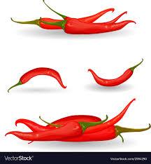 chili pepper vector. Perfect Chili Collection Red Chili Pepper Vector Image On Chili Pepper Vector V