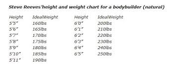 Bodybuilding Body Measurement Chart Ideal Body Measurements For Men