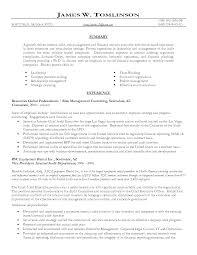 Resume Audit Associate Resume