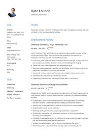 Veterinary Technician Resume Templates Resume Examples
