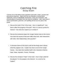 The Awakening Edna Essay  The Awakening Edna Research papers