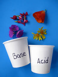 Acid And Base Venn Diagram Acid Or Base Activity Education Com