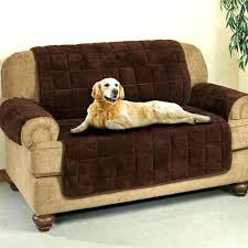 sofa pet covers. Fine Sofa Pet Sofa Covers With Straps Furniture Protector Couch Cover  Waterproof  And