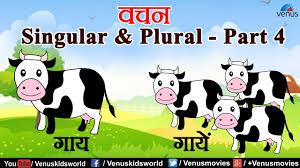 Hindi Grammar Lessons Singular Plural Part 4