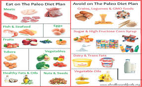 Paleo Diet Chart In Tamil Paleo Diet Welcome To The Cavemans Menu