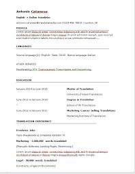 Behold: The End Result of a Translator CV
