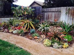 Small Picture How to develop a low maintenance water wise garden Kempton Express