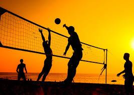 volleyball volleyball wallpaper