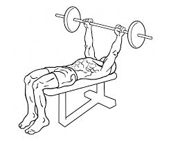 45 Minute Chest Building Workout Program U2022 Just FitnessDecline Barbell Bench