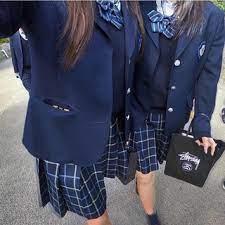 日本 福祉 大学 付属 高校