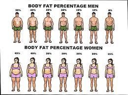Body Fat Percentage Diagram Manual E Books