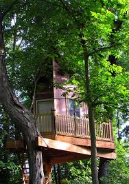 Save 40 on Treehouse Plans this Weekend Only Nelson Treehouse