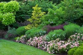 plant a garden for year round color