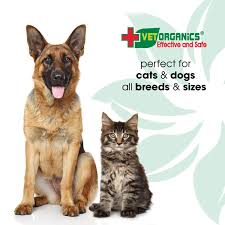 Amazon.com : Anti-Allergy for Dogs & Cats Use Our All-Natural ...
