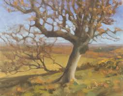 oil study of birch tree outdoor oil painting of tree
