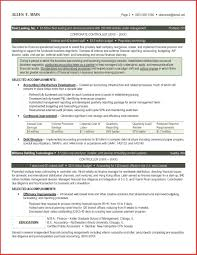 Stunning Resume In Dubai For Accountants Ideas Resume Samples