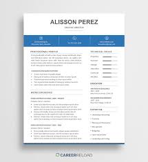 Blank Templates Free Resume Free It Resume Templates Director Of Template