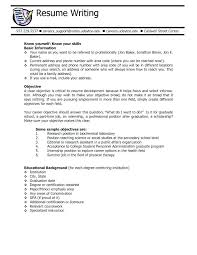 Ideas Of Resume Job Objective Security Objectives Resume Resume Job