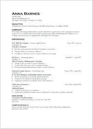 Resume Computer Skills Examples List Of For Orlandomoving Co
