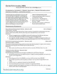 Driving Instructor Sample Resume Podarki Co