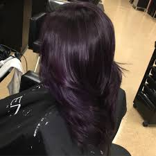 50 Glamorous Dark Purple Hair Color