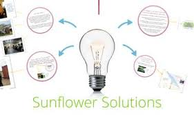Sunflower Solutions by Hilary Lucas