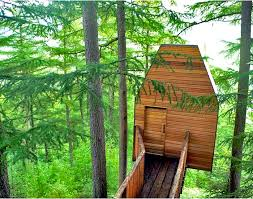 203 Best Treehouse Ideas Images On Pinterest  Treehouses Treehouse Scotland