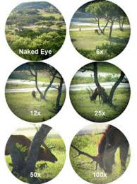 Rifle Scope Power Chart How To Choose The Best Rifle Scope Complete Guide 2019