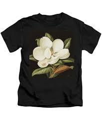 Magnolias On Light Blue Velvet Cloth Tulip Magnolia Kids T Shirts Fine Art America