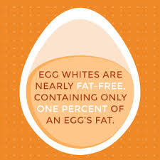 so for 17 calories egg whites do offer some nutrition and lots of protein it s probably a better idea to eat more egg whites than whole eggs in larger