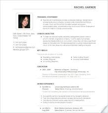 Best Resume Template For It Professionals Best Professional Resume