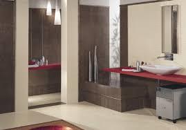 Decorating A Small Bathroom With No Window Windows Bathrooms ...