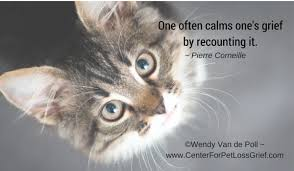 Loss Of A Cat Quotes Magnificent Pet Loss Quotes Center For Pet Loss Grief