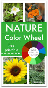 We also have math coloring pages like color by number addition, multiplication, and color by number for holidays like easter and christmas. Nature Colour Wheel Activity With Printable Colour Wheel Nurturestore