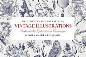 Vintage Illustrations Last Chance 540 High Quality Vintage Illustrations Flowers
