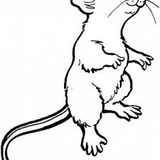 Small Picture Mouse and Rat Coloring Pages for Kids Bulk Color