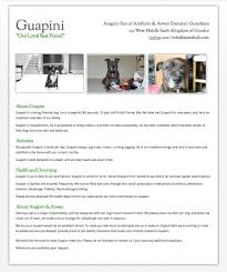 Dog Resume Free Resume Example And Writing Download